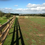 Blackwood Country Gates: Fences